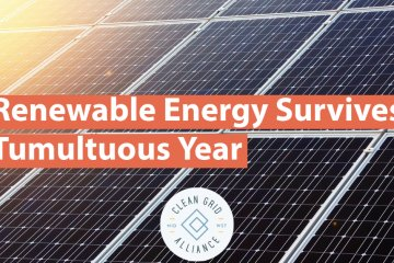Renewable Energy Survives Tumultuous Year