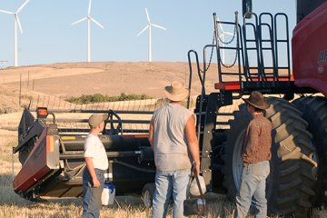 "Wind Energy offers ""baseload"" support for farmers"